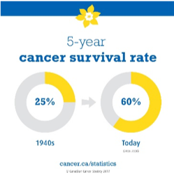 Cancer Survival Rate Pie Chart
